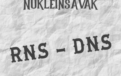 Nukleinsavak RNS, DNS